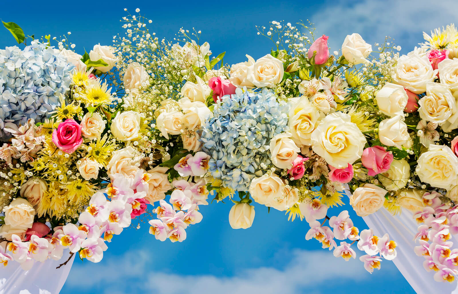 In What Ways Flowers Can Be The Best Gift For Your Loved Ones?